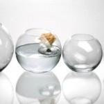 Vaso vetro Leonardo Boccia 17