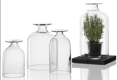 Mini serra vetro Leonardo Minigarden 20