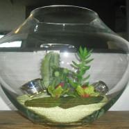 Vaso vetro GIARDINO WIDE Leonardo