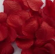Decorazione petali rosa rossa Leonardo